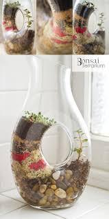 115 best terrariums images on pinterest terrariums plants and