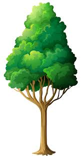 Free Green Tree Clip Art Free Download Clip Art Free Clip Art On