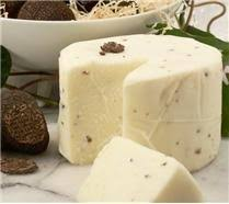 italian truffle cheese 40 best cheese enthusiast images on kitchen truffles