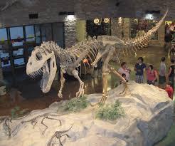 file museum al dinosaur jpg wikimedia commons