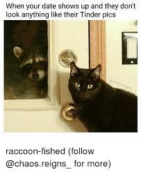 Raccoon Meme - 25 best memes about raccoon raccoon memes