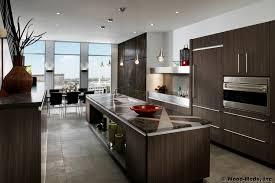 kitchen modern kitchen cabinets miami european kitchens pictures