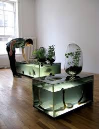 home decor ideas simple aquarium decorations ideas