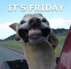 Happy Friday Meme - it s friday friday happy friday tgif days of the week friday