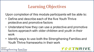 youth thrive a protective factors approach for older youth ppt