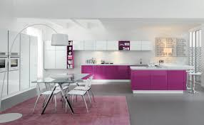 kitchen beautiful cool purple white kitchen designs purple