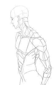 103 best anatomy chest torso images on pinterest anatomy