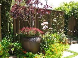 Small Garden Border Ideas Garden Designs Small Garden Border Designs Flower Borders