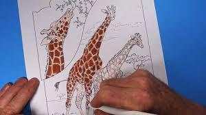 coloring book giraffes youtube
