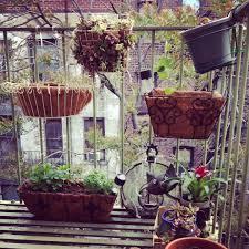 fire escape garden nyc urban gardening good idea