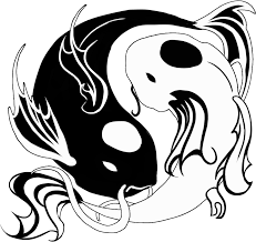 koi fish yin yang circle design photos pictures and feng shui for