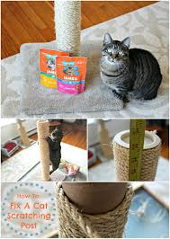 Cool Cat Scratchers How To Re Sisal A Cat Scratching Post