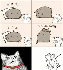 Memes Rage Comics - pusheen cat meme hates lazy cats in rage comic gif
