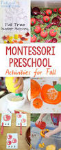 best 25 montessori kindergarten ideas on pinterest toddler