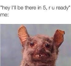 Bat Meme - funny bat memes bat best of the funny meme