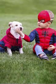 Dog Halloween Costumes 53 Funny Dog Halloween Costumes Cute Ideas Pet Costumes