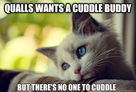Cuddle Buddy Meme - qualls wants a cuddle buddy but there s no one to cuddle first