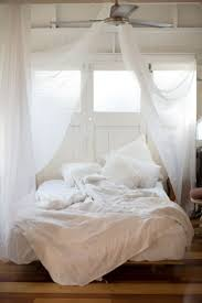 Mosquito Net Curtains by How To Trap Mosquitoes Best Ideas About Mosquito Net On Pinterest