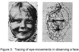 Sudden Blind Spot In Both Eyes The Blind Spot By Thomas Fraps