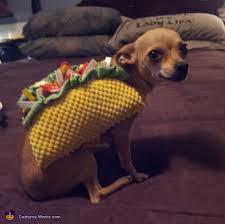 Taco Costume Dog Costume