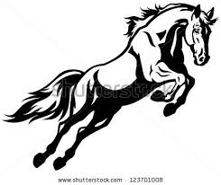 Black Mustang Horse Mustang Horse Stock Images Royalty Free Images U0026 Vectors