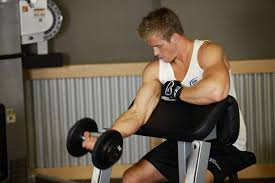 Bench Bicep Curls Bicep Workouts With Dumbbells 5 Exercises Will Make You Enjoy