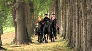 halloween horse background friesians the movie trailer ii youtube