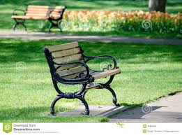 wood park benches in spring stock photo image 46980984