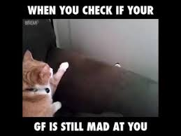 Angry Girlfriend Meme - checking if your girlfriend is still mad youtube
