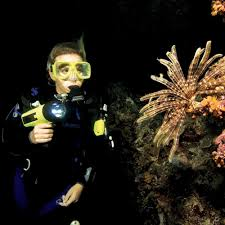 classes scuba diving in miami fl best scuba diving classes