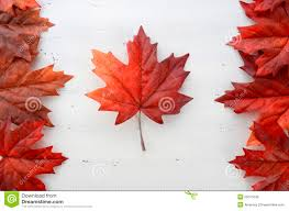 History Of Canadian Flag Canada Stock Images Download 255 648 Photos