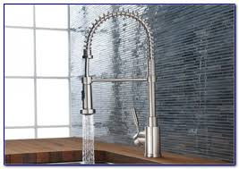 Blanco Kitchen Faucets by Blanco Faucets Blanco Chrome Faucet Blanco Torino Single Handle