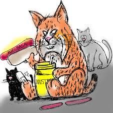 bobcat door glass bobcat enters home through pet door sticks around for snacks