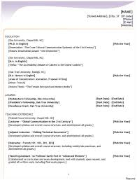 combination resume template resumeemplate striking combination meaning pdf exles formats how