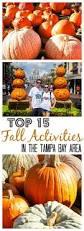 Pumpkin Patch Louisburg Nc by 25 Best Ideas About Pumpkin Patch Locations On Pinterest