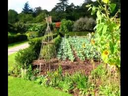 kitchen garden ideas home vegetable garden ideas