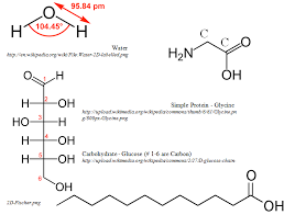 09 03 01 catering middle science monomers polymers and