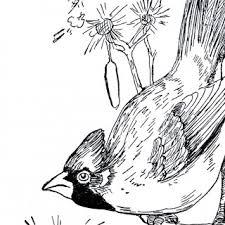black white clip art archives 36 86 graphics fairy