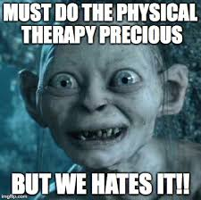 Physical Therapy Memes - physical therapy precious