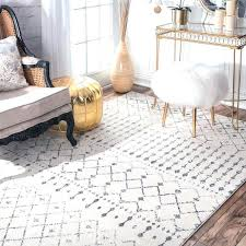 Area Rugs Home Goods Home Goods Area Rugs S S S Home Goods Outdoor Rugs Thelittlelittle