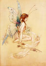 fairy butterfly free stock photo public domain pictures