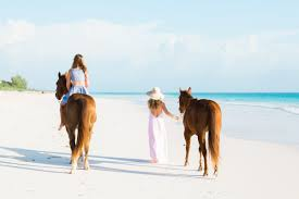 horseback riding with island company on harbour island palm