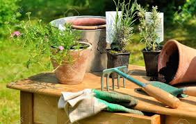 gardening tools arranged on a wooden table in the garden stock