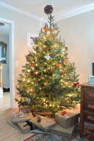 peachy christmas tree theme decorations creative christmas inspiring