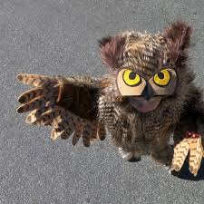 owl costume make an owl costume 13 steps with pictures