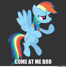 Rainbow Dash Meme - mlp rainbow dash meme google search rainbow dash pinterest