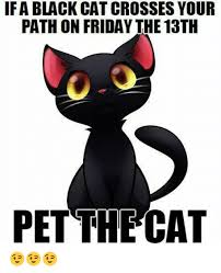 Friday The 13 Meme - ifa black cat crosses your path on friday the 13th 00 pet thecat