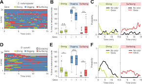 figures and data in species specific modulation of food search