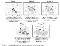 occurrence and growth history of texturally sector and sigmoidal