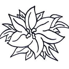 poinsettia coloring pages charming poinsettia flower in flowerpot coloring page charming